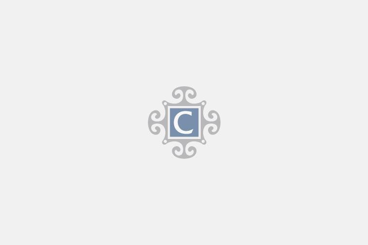 """Masons - Regency - Dinner Plate - 93/4"""""""