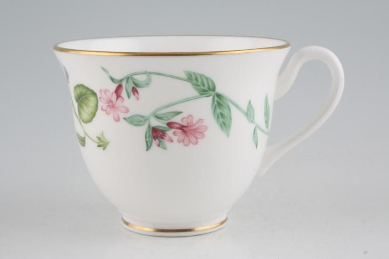 Royal Worcester - Arcadia - Teacup